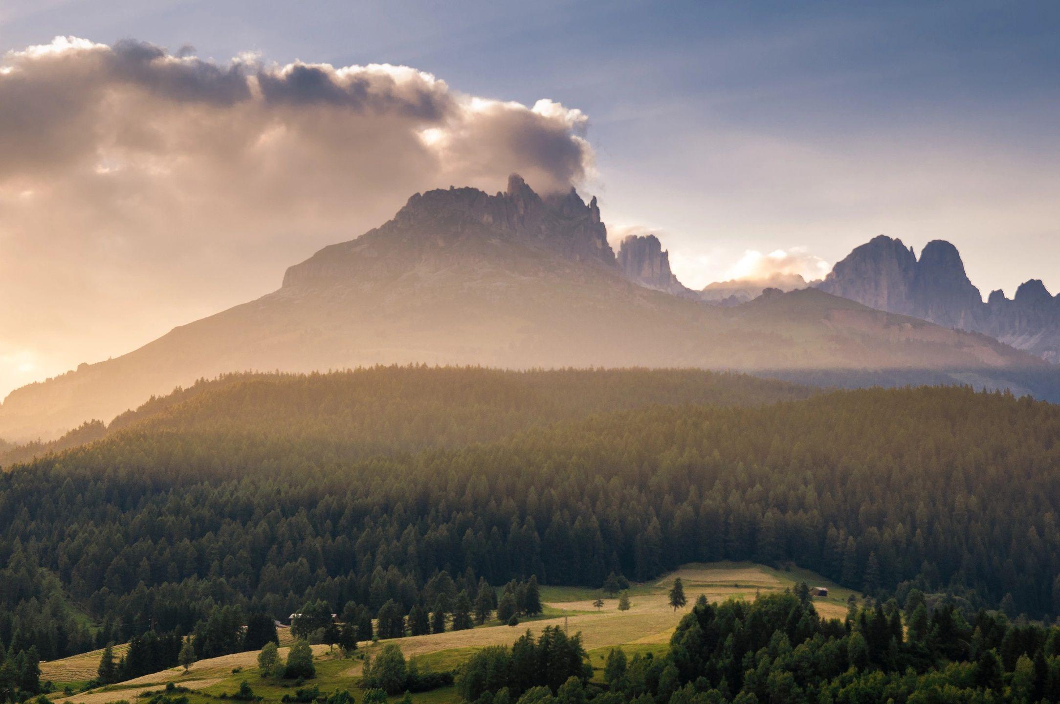 Psalm 118 – Part 1